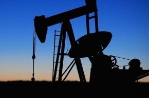 Нефть дешевеет на мировых торговых площадках