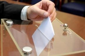 Россияне стали больше интересоваться политикой перед выборами в Госдуму