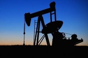 Цены на нефть снижаются на мировых биржах