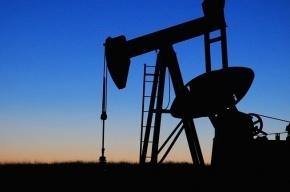 Цены на нефть растут на мировых биржах