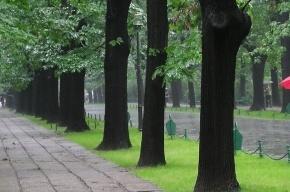 Ливни идут на Петербург