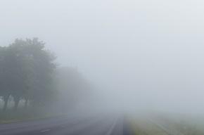 Трудовая неделя в Петербурге начнется с тумана