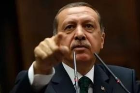 СМИ: Эрдоган использовал русский язык в извинениях перед Россией