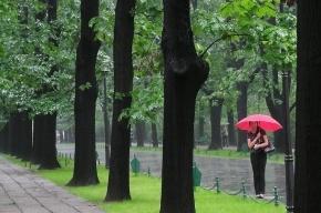 МЧС предупреждает о грозах в Петербурге