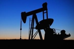 Нефть растет в цене на мировых биржах