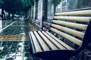 Погода оставит петербуржцев без бабьего лета в сентябре