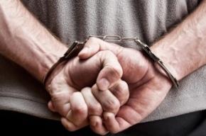 Петербургского бизнесмена заподозрили в изнасиловании двух девочек