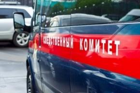 Мигранта арестовали в Петербурге по обвинению в изнасиловании