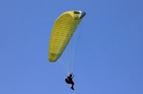 Парапланерист упал с высоты 400 метров в Ленобласти и выжил