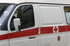 Молодая жительница Купчино умерла в одиночестве в Ленобласти