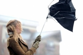 Выходные в Петербурге начнутся с дождя и штормового ветра