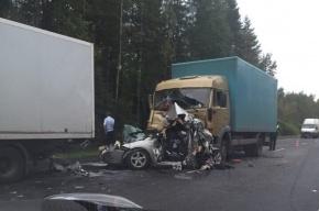 Авария с двумя погибшими произошла на Мурманском шоссе