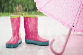 МЧС предупреждает о проливных дождях в Петербурге