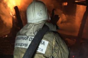 Пострадавший на улице Лени Голикова получил 80 процентов ожогов тела