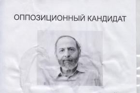 Фейковые листовки Бориса Вишневского расклеены по Центральному району