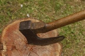 Стали известны подробности зверского убийства на улице Руднева