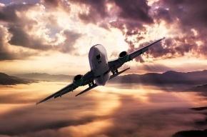 Птица попала в двигатель самолета в Томске