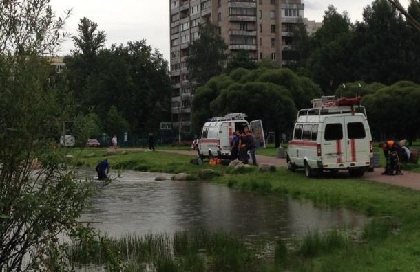 Спасатели ищут утопленника в пруду у Светлановского проспекта