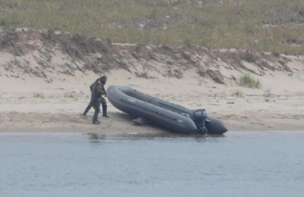 Сахалинские браконьеры избили тюленей ногами