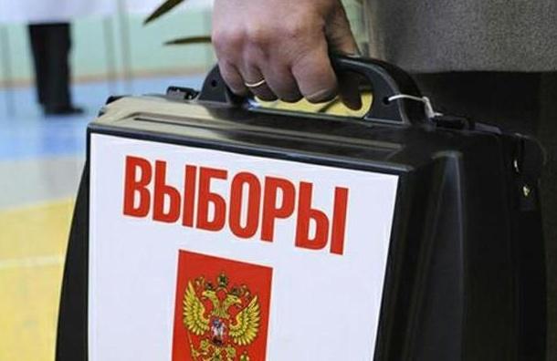 Голосование на участке в центре Петербурга остановили из-за махинаций
