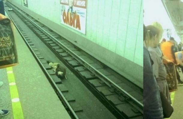 Молодой парень упал на рельсы на станции «Чкаловская»