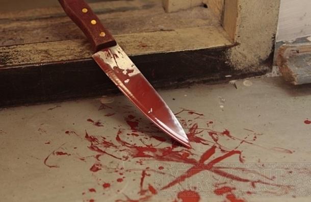 Петербурженка убила своего мужа в нетрезвой ссоре вквартире наВаршавской улице