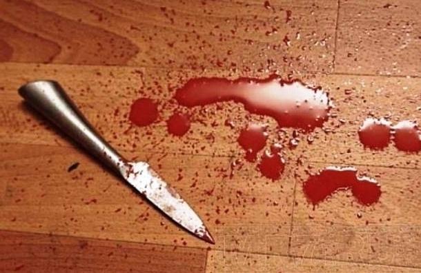Пенсионер с галлюцинациями порезал ножом полицейского под Владимиром
