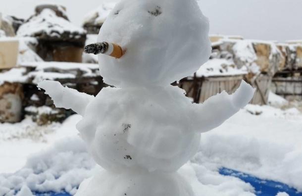 Первый снег выпал в Магаданской области