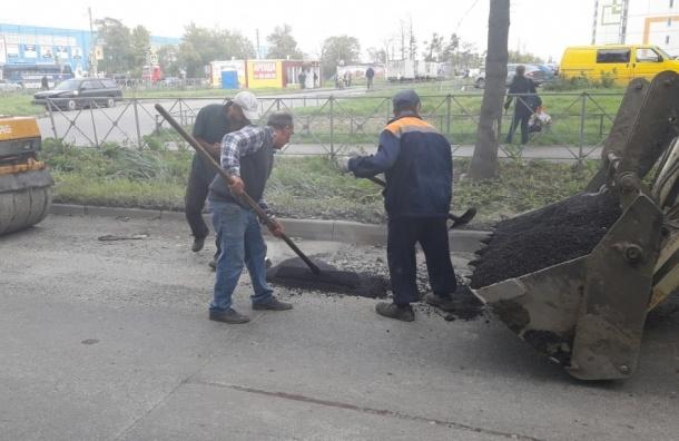 Жители микрорайона Шушар сами починили местную дорогу