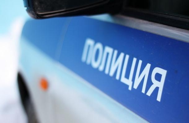 Двух петербуржцев отправили в полицию из-за жалобы на «карусель» на Гаванской
