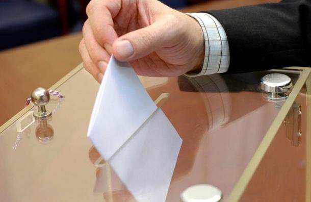 Предварительная явка на выборах составила меньше 40%