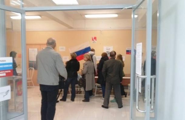 Голосование в Купчино идет активно