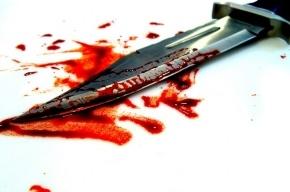Школьника подозревают в жестоком убийстве женщины