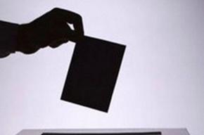 Организованное голосование наблюдатели увидели в Василеостровском районе