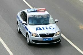 ФАС уличила МВД РФ в нарушениях при закупке мигалок