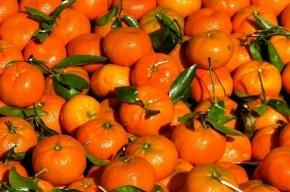Россельхознадзор снимет запрет на поставки овощей и фруктов из Египта