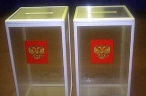 Пьяная женщина на выборах в Госдуму пыталась забрать домой урну