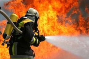 Шестерых подозреваемых в поджоге здания телеканала «Интер» задержали в Киеве