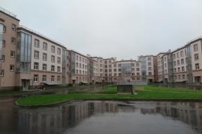 Север или Юг: куда растет Петербург?