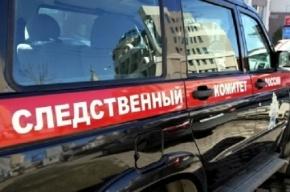 Обыски прошли в петербургском издательстве «Амфора»