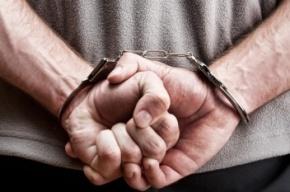 Порнографа-педофила задержали в Сосновом Бору