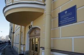 Подростки-грабители в центре Петербурга отобрали планшет у школьницы