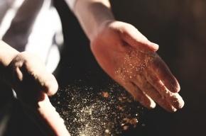 Ученые: домашняя пыль провоцирует рак и аллергию