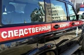 Душевнобольной мужчина ходит по Москве с расчлененными телами