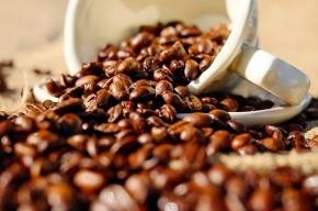 Ученые: кофе исчезнет через 60 лет