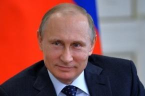 Путин заявил о возможности корректировки «пакета Яровой»