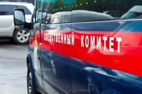 СК проводит обыски в «Ленэнерго»