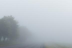 Густой туман накрыл Петербург