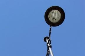 Петербуржец залез на фонарный столб и получил удар током
