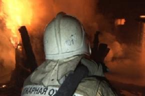 Мужчина погиб в квартирном пожаре на бульваре Новаторов